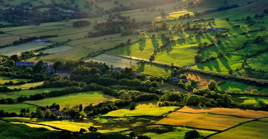 Agricultura Familiar e Sustentabilidade
