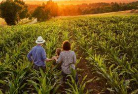 Desfazendo as confusões sobre a Agricultura Familiar no Brasil