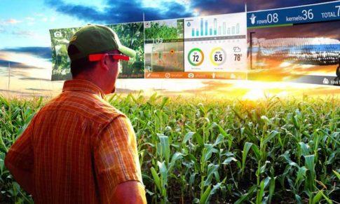 Big Data na agricultura: como tomar melhores decisões