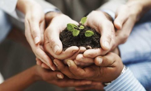 Como identificar a cultura organizacional da sua empresa rural