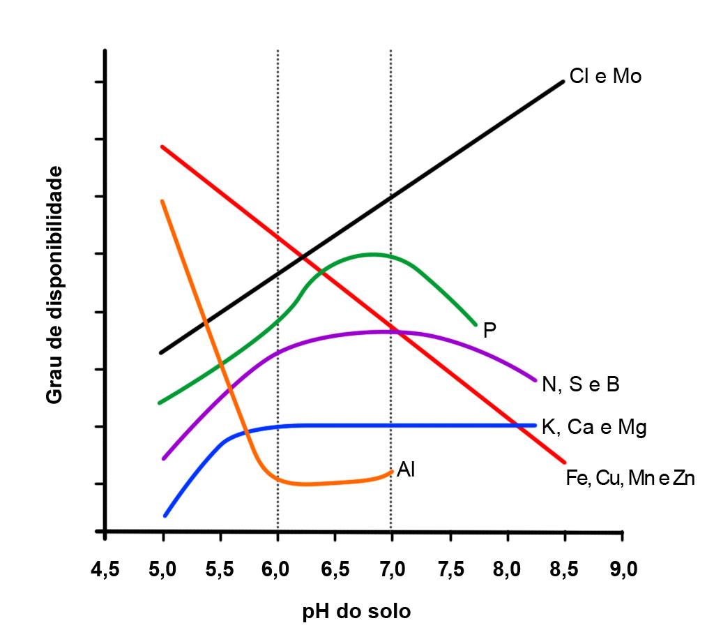 Calagem: disponibilidade de nutrientes na solução do solo