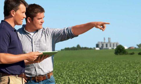 Ferramentas de gestão do Agronegócio: otimize seus processos