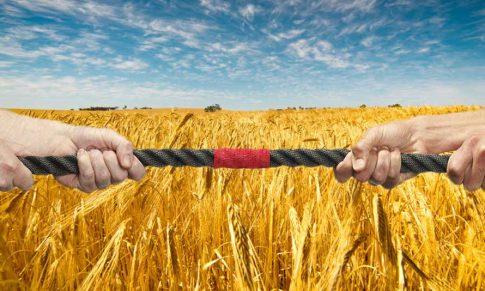 10 dicas de gestão de conflitos para empresas do Agronegócio