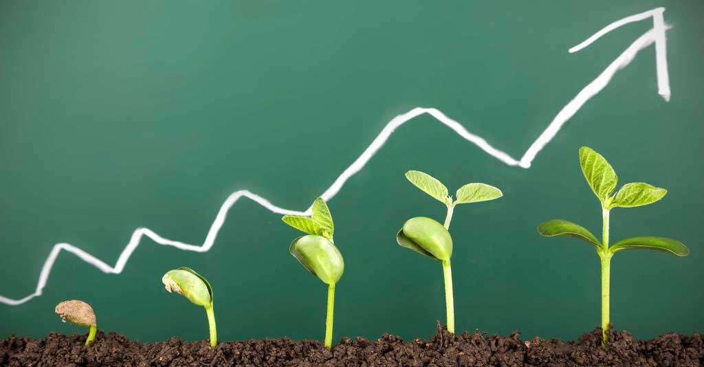 Gestão da Inovação - Importância