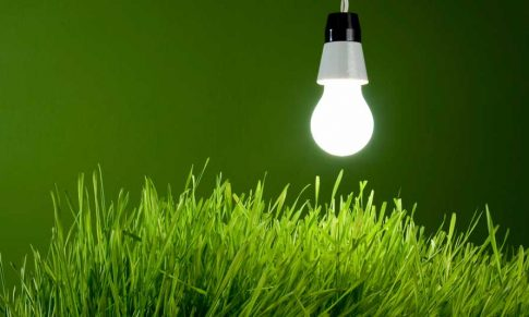 Os 4 Ps da Gestão da Inovação para empresas do Agronegócio