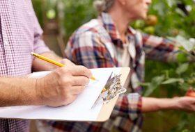 Gestão para Resultados no Agronegócio: tome melhores decisões