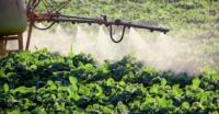 Guia simplificado sobre herbicidas para o manejo de plantas daninhas