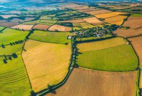 A rotação de culturas como solução de problemas atuais da Agricultura