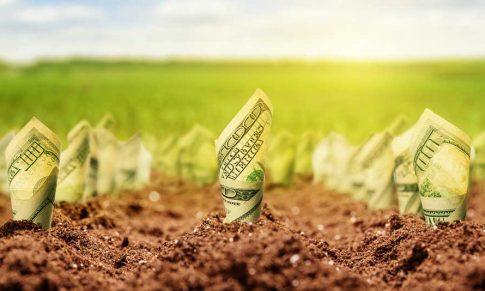 Os 7 pilares do sucesso das propriedades rurais mais lucrativas